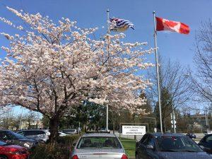 Gặp hội đồng trường trung học công lập Langley schools district, Vancouver, Canada