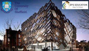 Học bổng Foundation & Pre-Master tại Đại học Sheffield, UK kỳ tháng 3& 9/2019